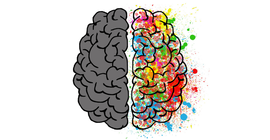 left brain performs tasks that have to do with logic, such as science, mathematics and thinking in words (language). The right brain performs tasks that have do with imagination, intuition and arts.