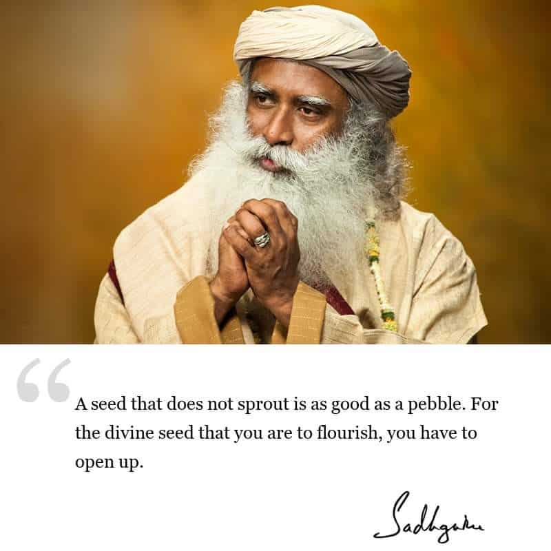 Sadhguru spiritual quote
